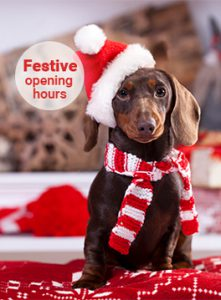 Festive opening hours